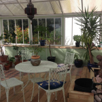 dog friendly b and b teignmouth