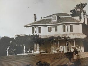 woodlands in 1930s